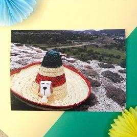 Postcard – Travel with Dottie (Mexico)